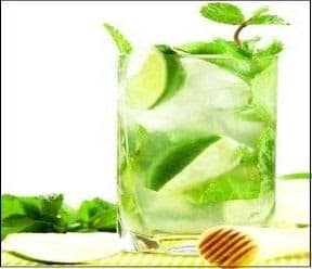 Mint Limeade 4241 F